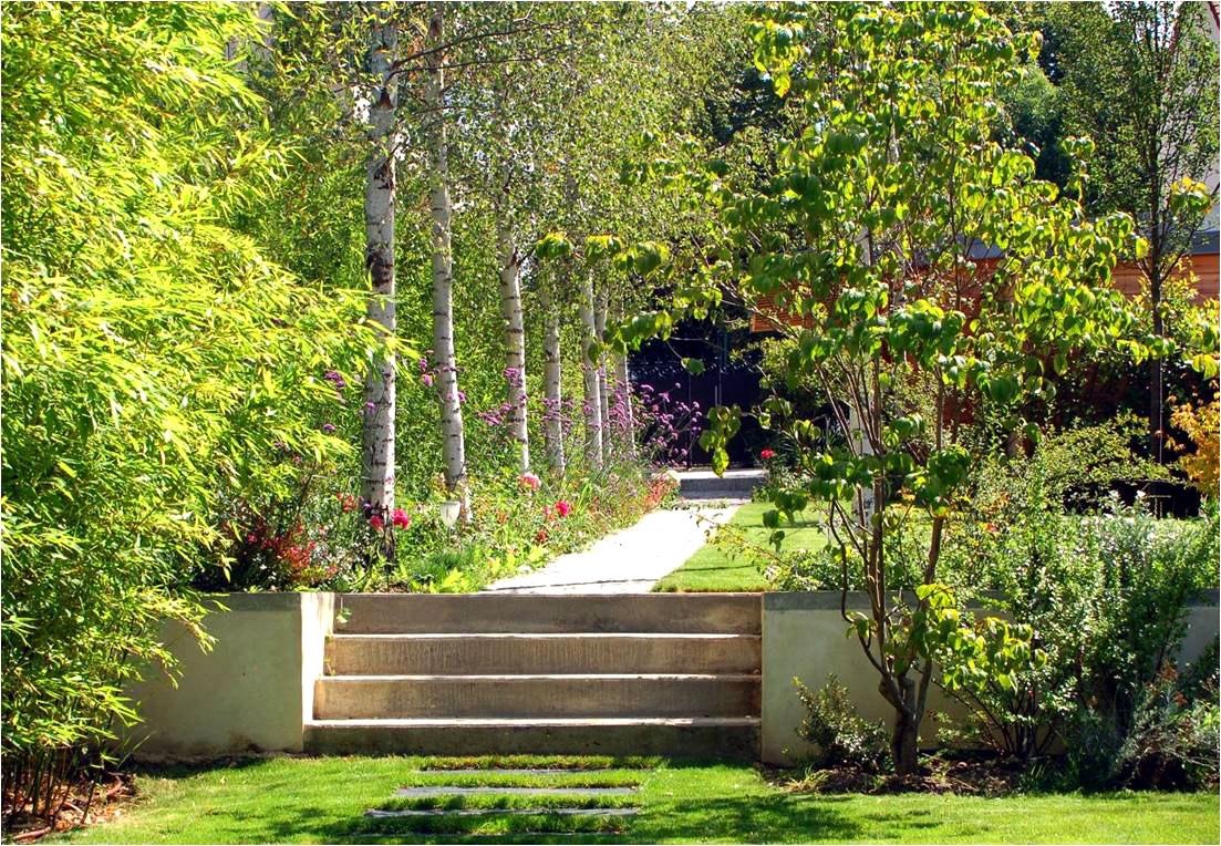 Paysagiste 92 am nagement de jardins apex paysage Image jardin paysager