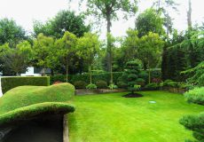 Jardin paysager structuré par des végétaux remarquables, Ville-d'Avray