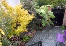 Entrée pavée et couleur d'automne