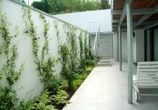 Aménagement planté de vivaces d'ombre et de jasmin d'étoilé, Ville-d'Avray