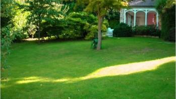Jardin avant travaux