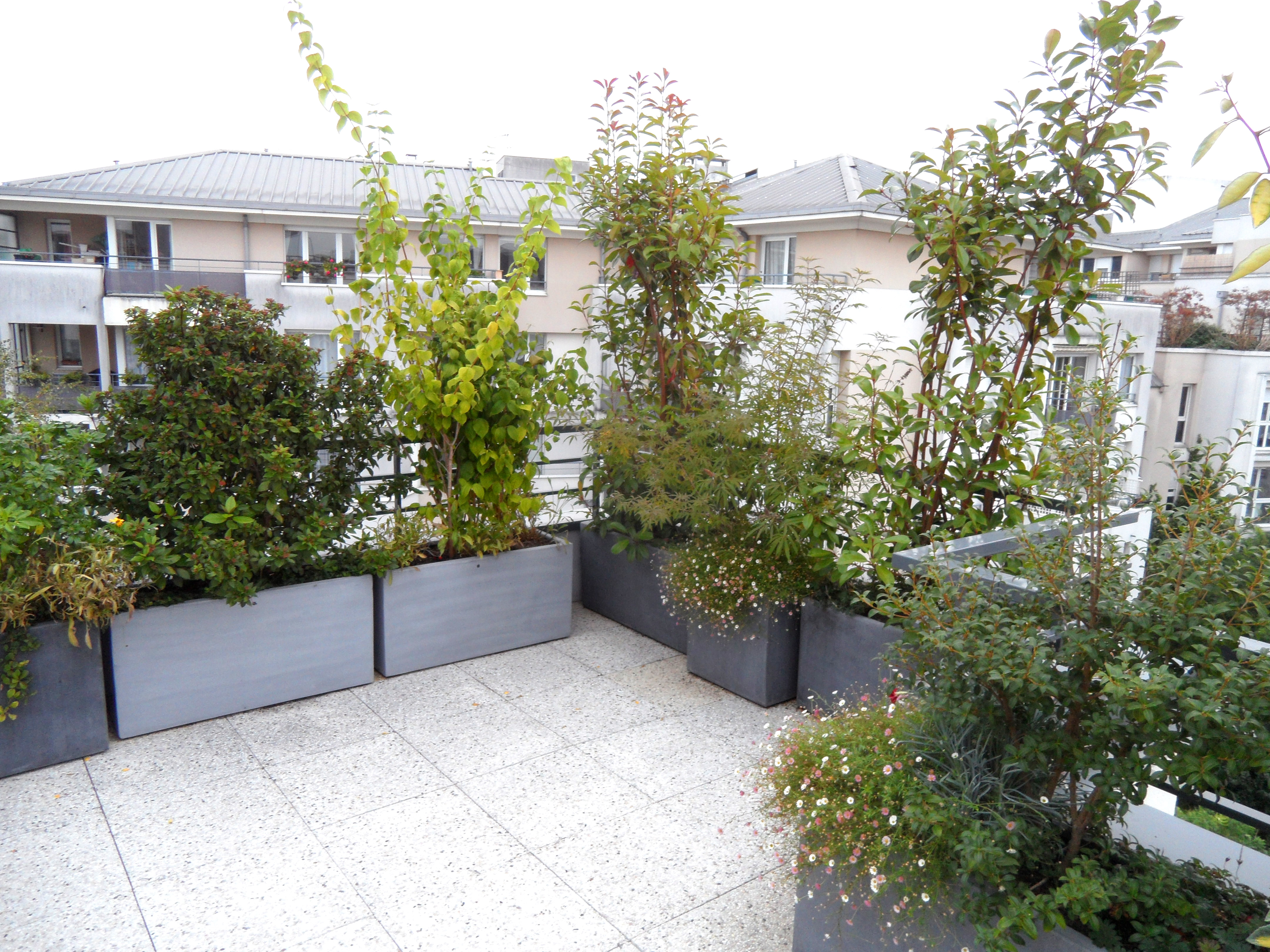 Toits Terrasses Et Balcons Paysagiste Paris 75 Apex Paysage