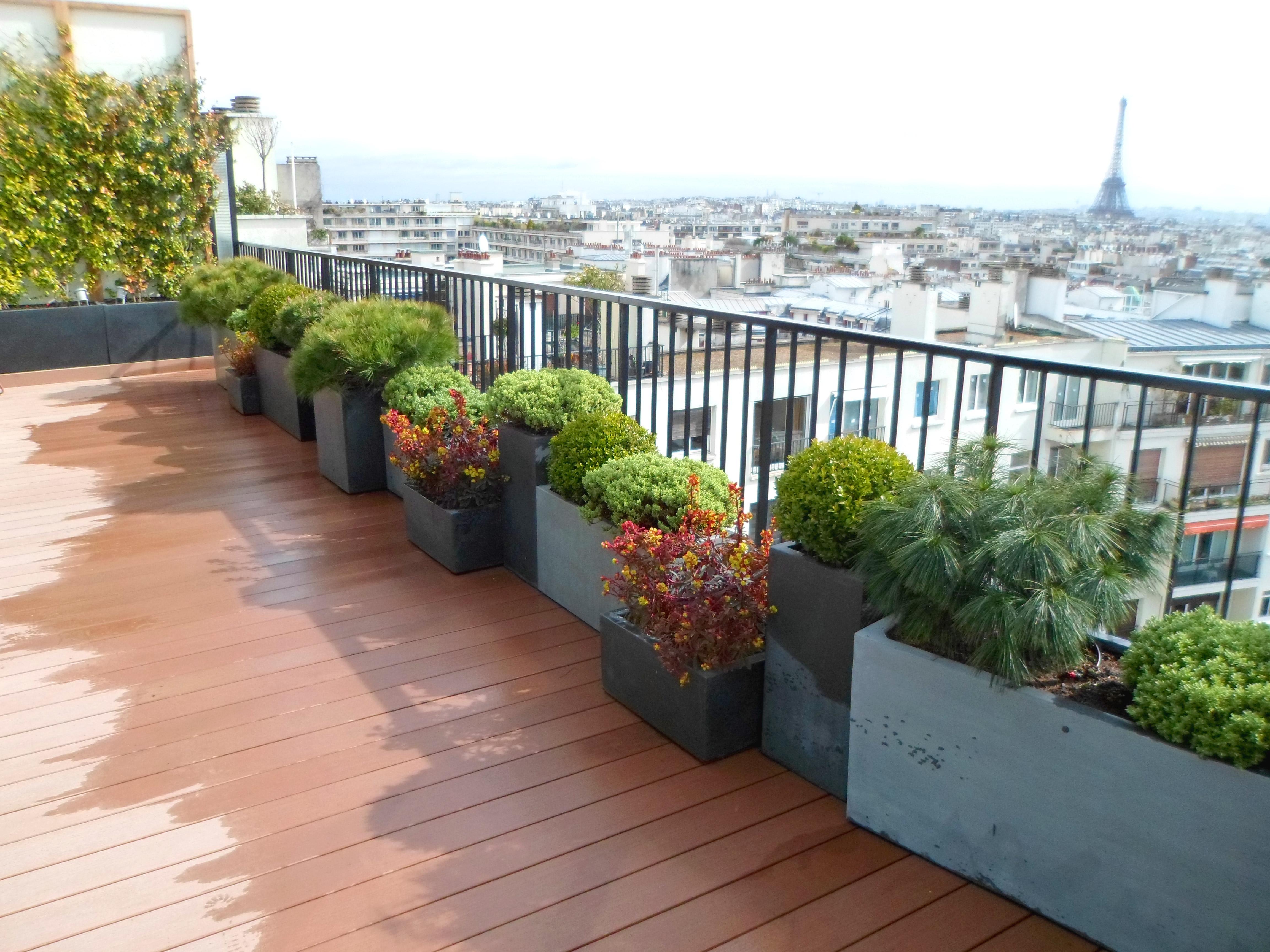 toits terrasses et balcons - paysagiste paris (75) - apex paysage