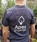 Recrutement Apex paysage
