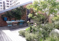 Aménagement d'une terrasse en thermofrêne, végétaux méditerranéens et plantation d'un Savonnier